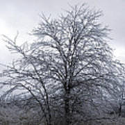 Frozen Landscape 4 Art Print