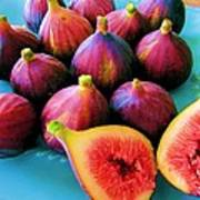 Fruit - Jersey Figs - Harvest Art Print
