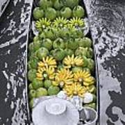 Fruits Art Print by Roberto Morgenthaler