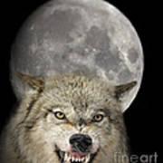 Full Moon Wolf Art Print