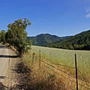 Galls Creek Road In Southern Oregon Art Print