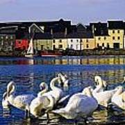 Galway City, County Galway, Ireland Art Print
