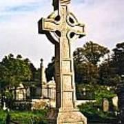 Galway Monastic Ruins 1 Art Print by Douglas Barnett