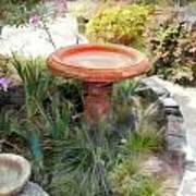 Garden Birdbath Art Print