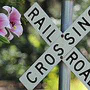 Garden Crossing Art Print