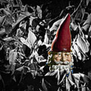 Garden Gnome With Gray Background Art Print