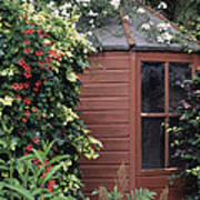 Garden Shed Art Print by Archie Young