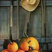 Garden Tools In Shed With Pumpkins Art Print