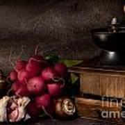 Garlic And Radishes Art Print