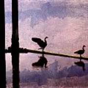Geese At Dawn Art Print