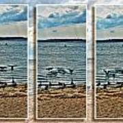 Geese Point Landing Triptych Art Print