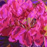 Geranium Pop Art Print