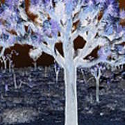 Ghostly Joshua Tree Art Print