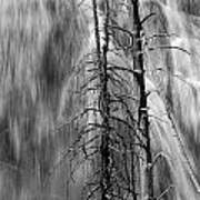 Gibbons Falls In Yellowstone National Park Art Print