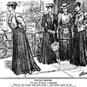 Gibson Girl, 1890s Art Print