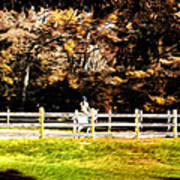 Girl Riding Horse Art Print
