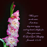 Gladiola Jeremiah 15 16 Art Print