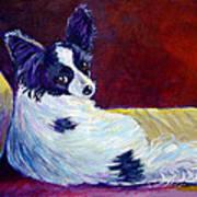 Glamor - Papillon Dog Art Print