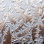 Glass Designs Art Print