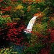 Glenoe Waterfall And Glen, Co Antrim Art Print
