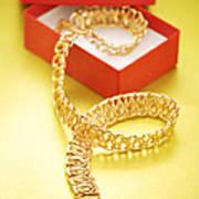 Gold Necklace Art Print