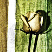 Gold Tulip Art Print