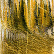 Golden Autumn Forest Art Print