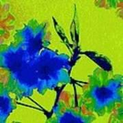 Golden Blossom Art Print by Jen White