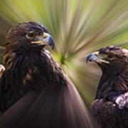 Golden Eagles Art Print