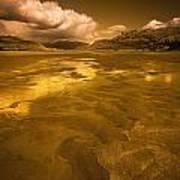 Golden Landscape Art Print