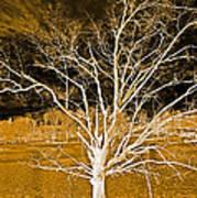 Golden Magical Tree Art Print