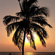 Golden Palm Art Print