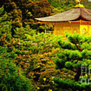 Golden Pavilion Temple In Kyoto Glowing In The Garden Art Print