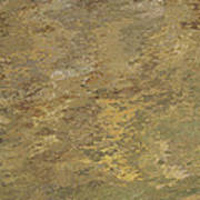Goldtone Stone Abstract Art Print