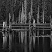 Goose Lake Dusk Art Print