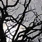 Goth Tree Art Print