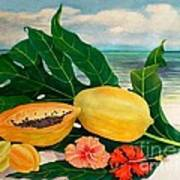 Grand Anse Still Life Art Print