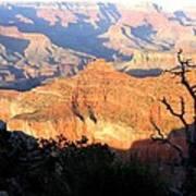 Grand Canyon 62 Art Print