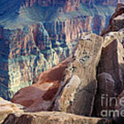 Grand Canyon Roxie Roller Art Print