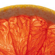 Grapefruit Macro 2 Art Print