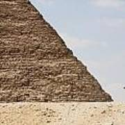 Great Pyramid Of Khufu Cheops And Camel Art Print