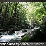 Great Smoky Mountains National Park 10 Art Print