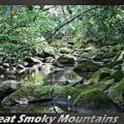 Great Smoky Mountains National Park 5 Art Print