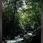 Great Smoky Mountains Np 007 Art Print