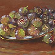 Greek Figs Art Print by Ylli Haruni