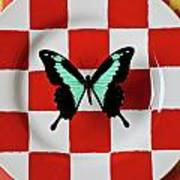 Green And Black Butterfly On Red Checker Plate Art Print