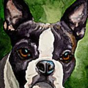 Green Black And White Art Print