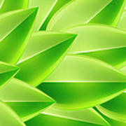 Green Feathers, Full Frame Art Print