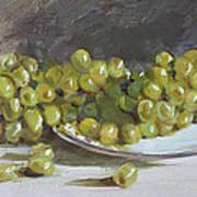 Green Grapes  Art Print