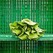 Green Greens Art Print